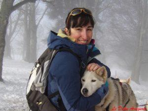 Husky Sibérien Nordique